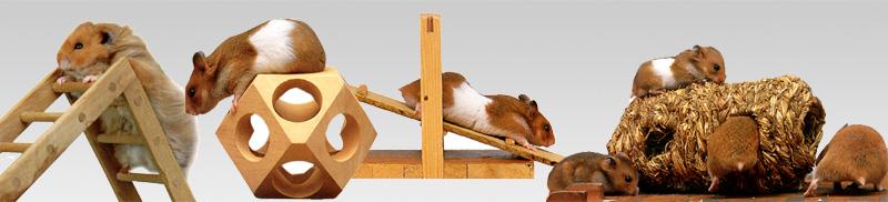 Das richtige zubehör für ein artgerechtes hamsterheim
