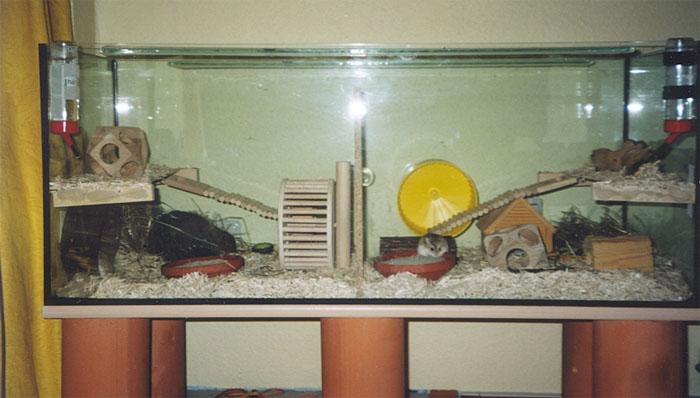galerie mit artgerechten beispielhaften hamsterbehausungen seite 4 von 5. Black Bedroom Furniture Sets. Home Design Ideas